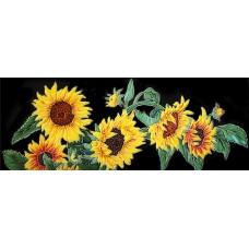 "6"" X 16"" Sunflower with Black Background Horizontal"