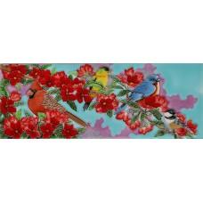 "6"" X 16"" Songing Bird Colors"
