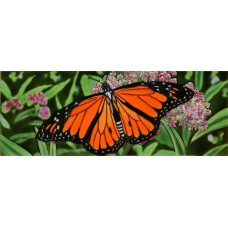 "6"" X 16"" Monarch Butterfly"
