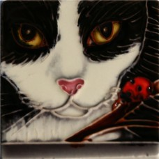 """3""""X3"""" MAGNET Black And White Cat"""
