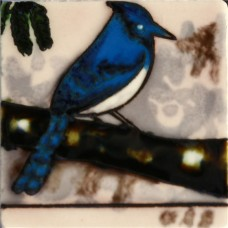 "3""X3"" MAGNET Blue Jay"