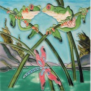 Frogs & Dragonflies