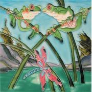Frogs & Dragonflies