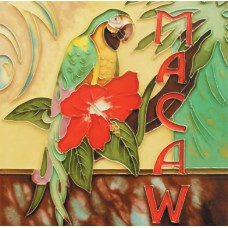 """8""""x 8"""" Macaw Parrot"""