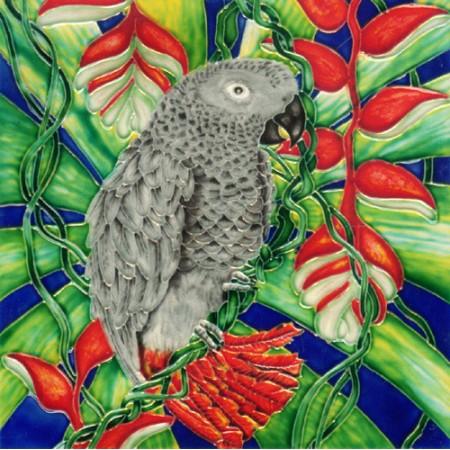 "8""x8"" Gray Parrot"