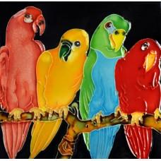 """8""""x8"""" Four Parrots"""