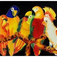 """8""""x8"""" Five Parrots"""
