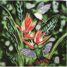"8""x8"" Buff Bellied Hummingbirds And Red Christmas Heliconia"