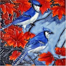 "8""x8"" Blue Jay"