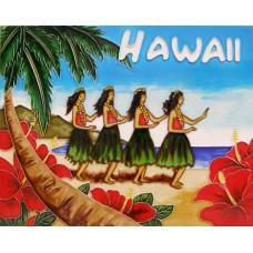 """11""""x14"""" Hawaii"""