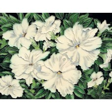 "11""x14"" White Flowers"