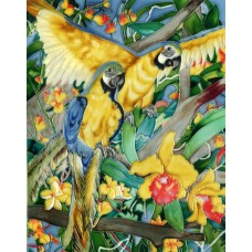 """11""""x14"""" Yellow and Blue Parrot"""