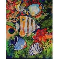 "11""x14"" Butterfly Aquarium"