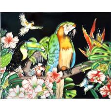 """11""""x14"""" Parrot-dise"""