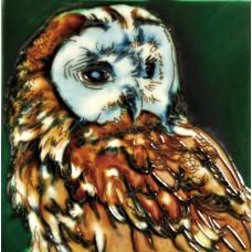 "6""x6"" Owl"