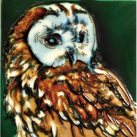 """6""""x6"""" Hoot Owl Family"""