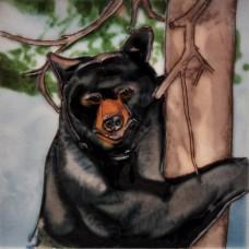 "6""x6"" Black Bear"