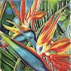 "6""x6"" Tropical Bird of Paradise"