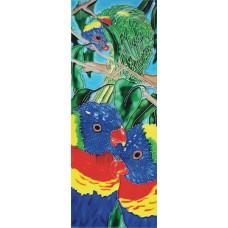 """6"""" X 16"""" Three parrots"""