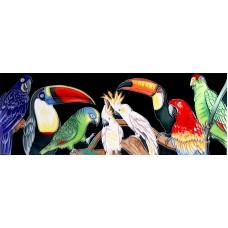 "6"" X 16"" Parrots"