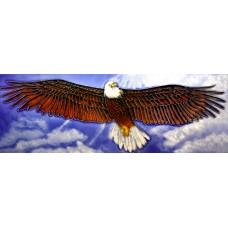 """6"""" X 16"""" Eagle"""