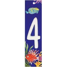 2x8.5 Aquarium 4