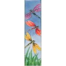 2x8.5  N-3DF   Dragonfly